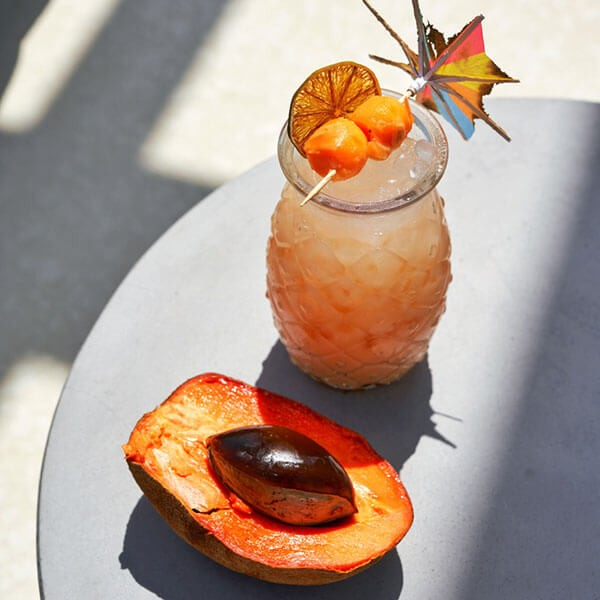 Mamey Cocktail